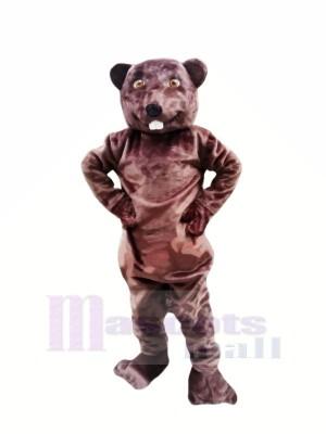 Heureux Castor Mascotte Les costumes Adulte