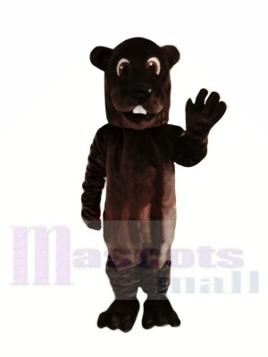 marron Adulte Castor Mascotte Les costumes Animal