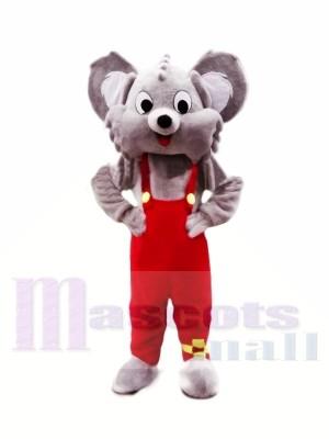 Mignonne Gris Koala Costumes De Mascotte