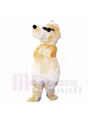 Sourire lunettes de soleil chien mascotte costumes dessin animé